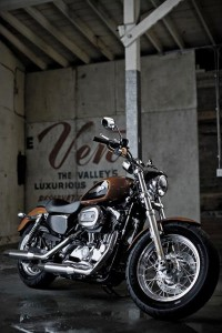 Harley-Davidson XL 1200 Custom, la nueva Sportster 001