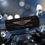 Detalle Harley-Davidson 110th Anniversary Editions